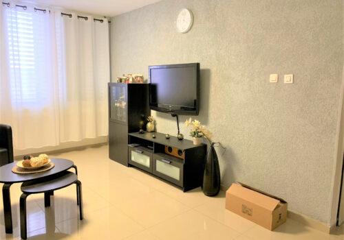 דירות להשכרה באריאל בורדים